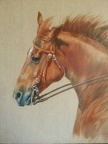 Equestrian Paintings